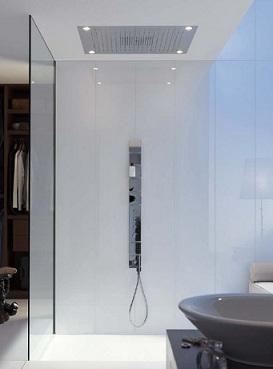 душ в потолке