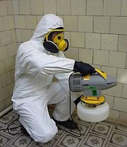 устранение мокриц химией